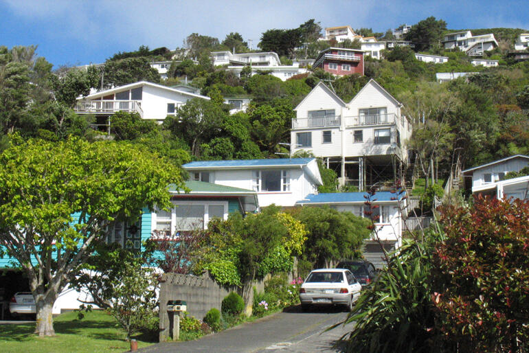 When did Kiwi home ownership slip away? Houses like these on a Wellington hillside are now more likely to be rented than owner-occupied.