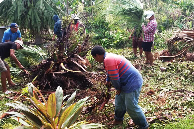 Young men from All Saints Fasi removing a palm uprooted by Cyclone Gita. Pic by Fei Tevi.